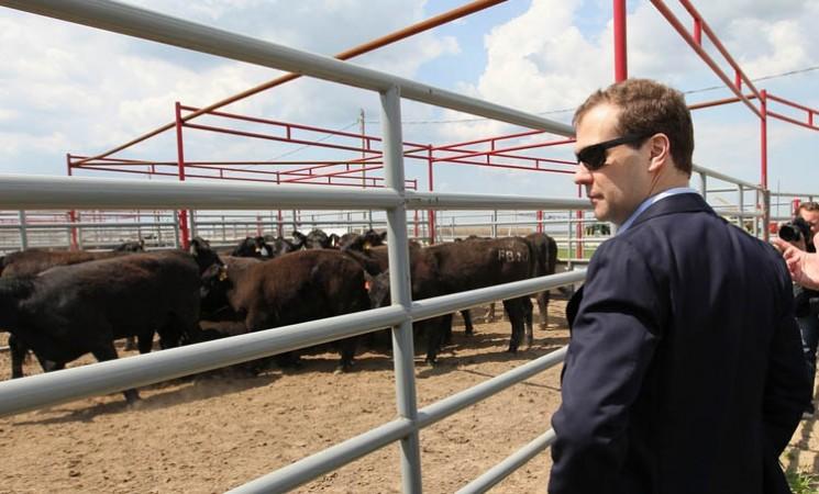Etudier l'agrobusiness, un secteur en pleine ébullition